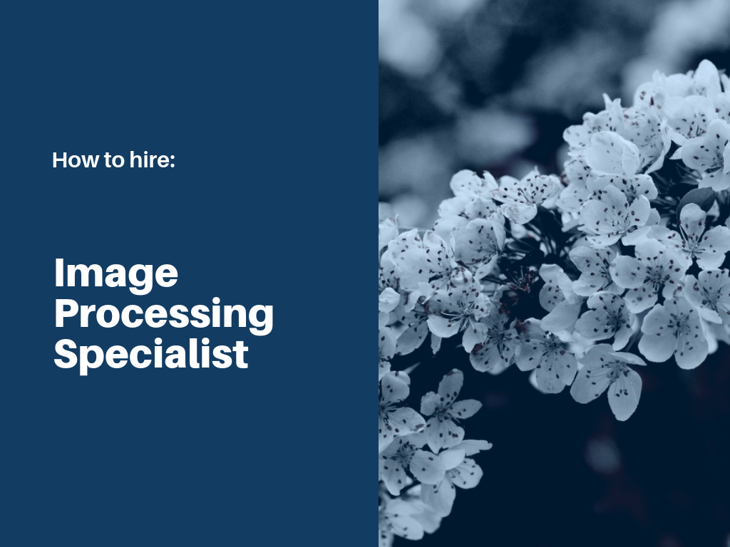 how-to-hire-image-processing-specialist