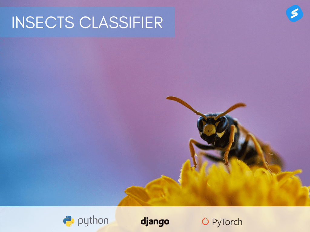 insects-classifier