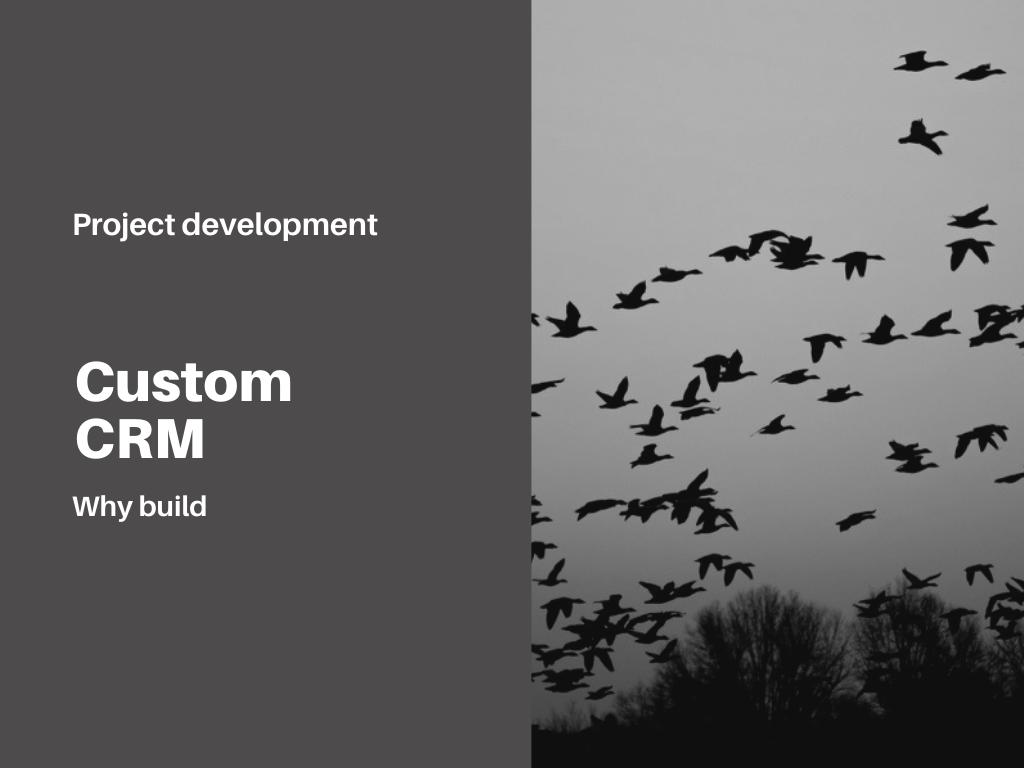 why-build-custom-crm